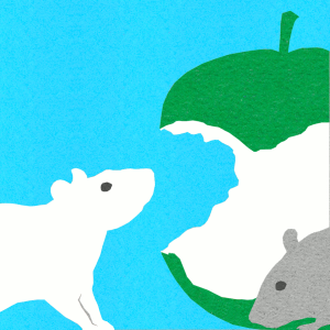 la prophétie des rats 1 web